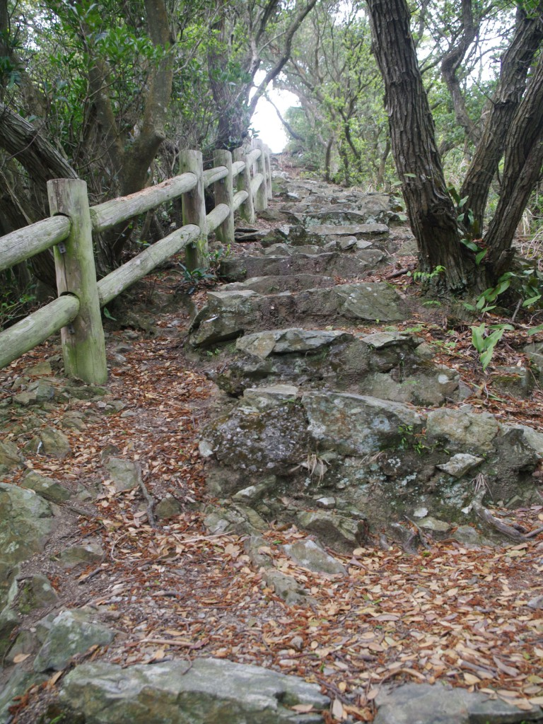石畳の上り道